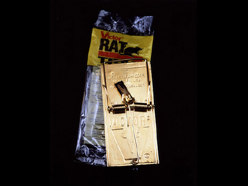 Artist: Bob Van Breda, Title: Rat Trap - click for larger image