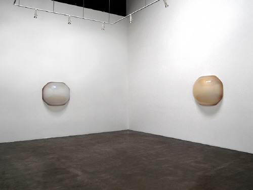 Artist: Craig Kauffman, Title: Installation View (left to right): Lansones, 2007; Durian, 2007 - click for larger image